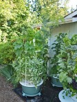 Tower Garden by Juice Plus+ grows more, faster.