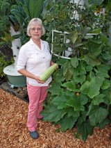 Tower Garden Grown Squash
