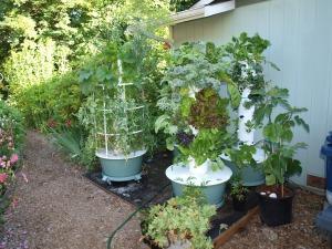 Our Tower Garden Urban Farm