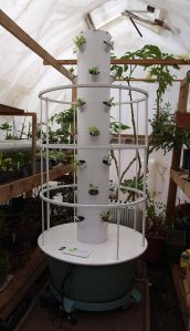 Tower Garden awaiting its grow lights.