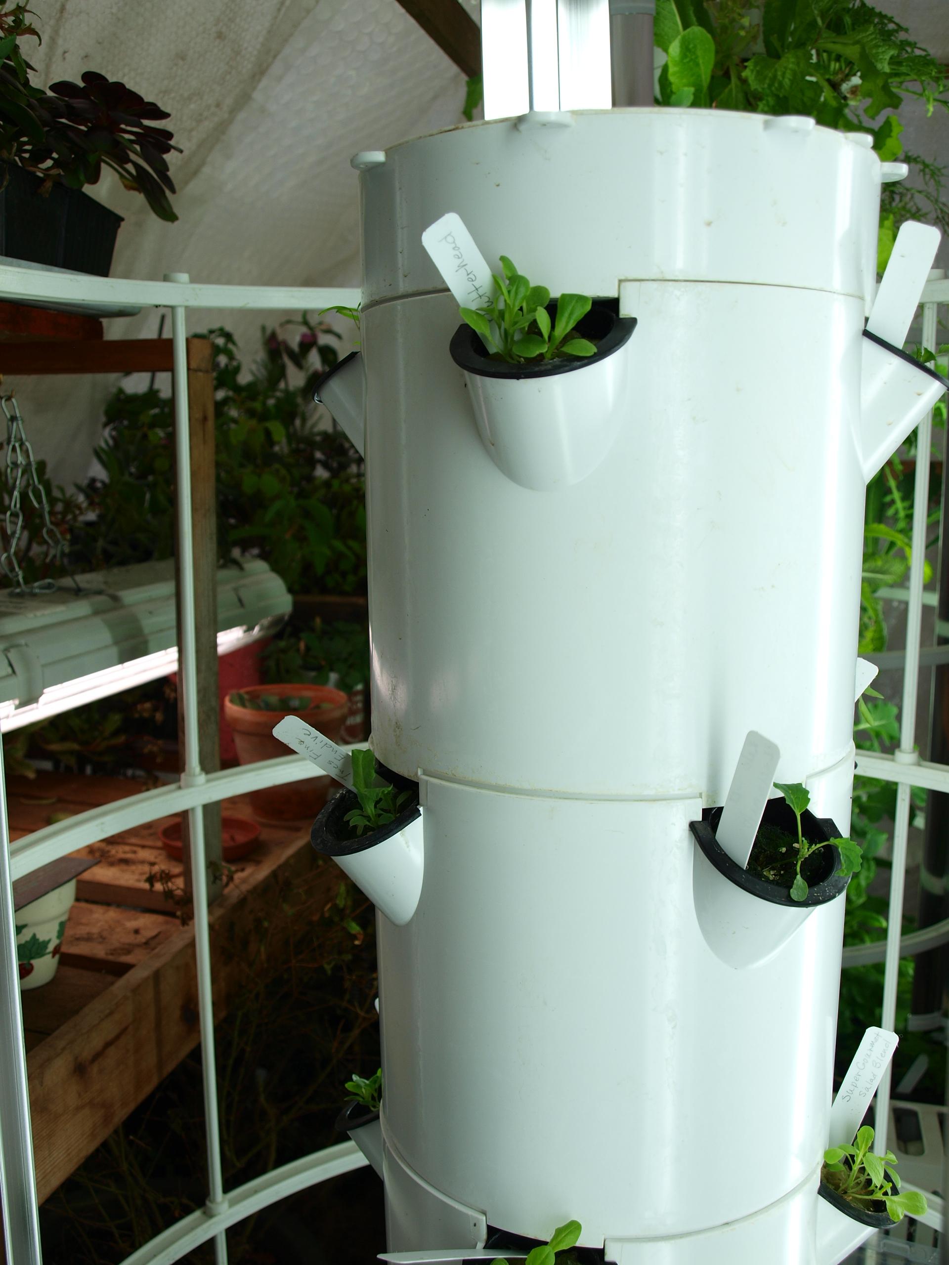 March 2014 backyard tower garden for Vertical garden tower