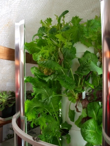 Tower Garden is a Lettuce Growing Machine