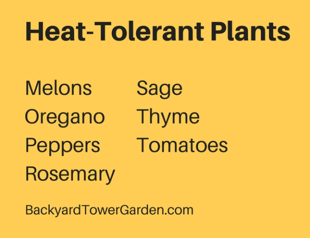 Tower-Garden-Heat-Tolerant-Plants