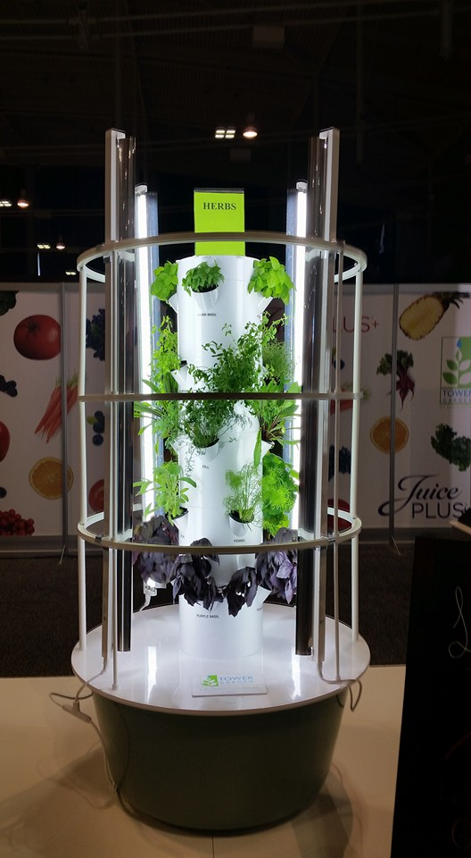 Yes you can grow herbs in a Tower Garden.
