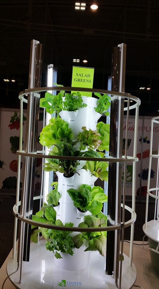 Photo of Tower Garden with salad greens growing in it.