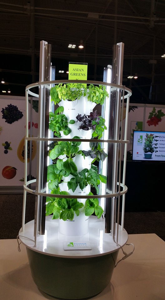 How to Grow Herbs In a Tower Garden of course Backyard Tower