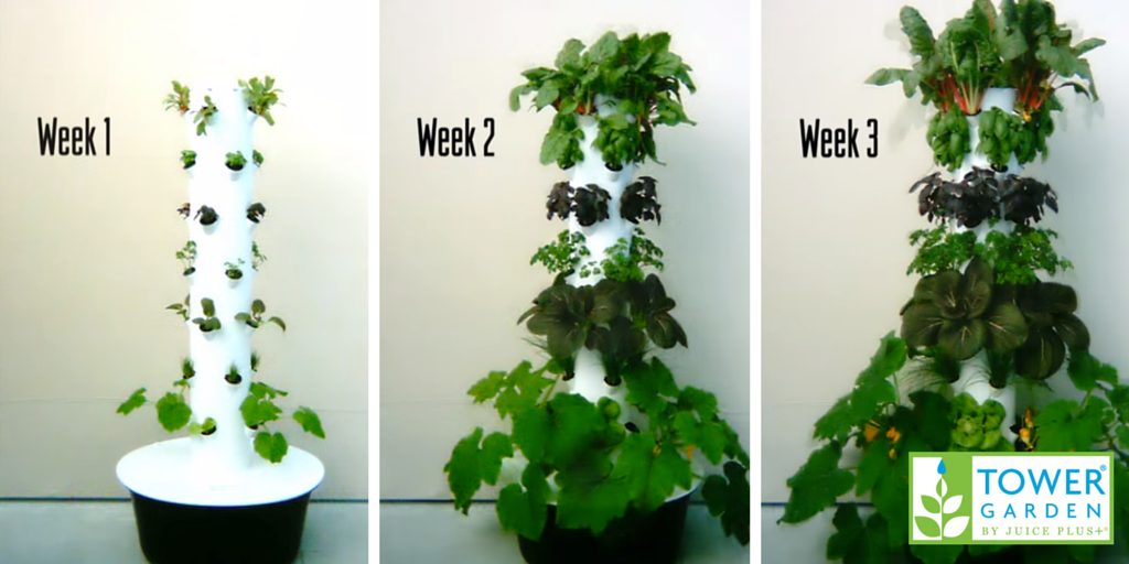 High Quality Aeroponic Gardening Tower Garden Pictures