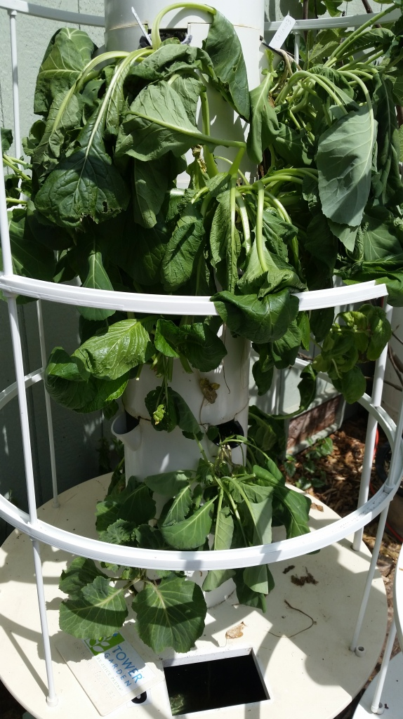 Tower Garden with wilted plants