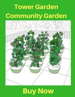 Tower Garden Community Garden