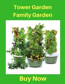 Tower Garden Family Garden